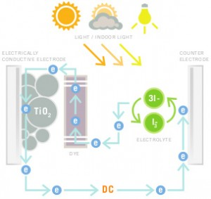 Dye Sensitized Solar Cells_cycle